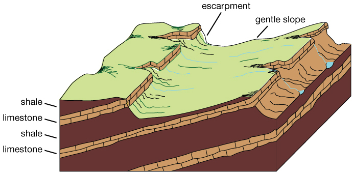 Illustration of cuesta topography.